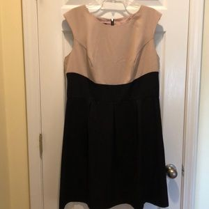 Cute career dress in tan and black